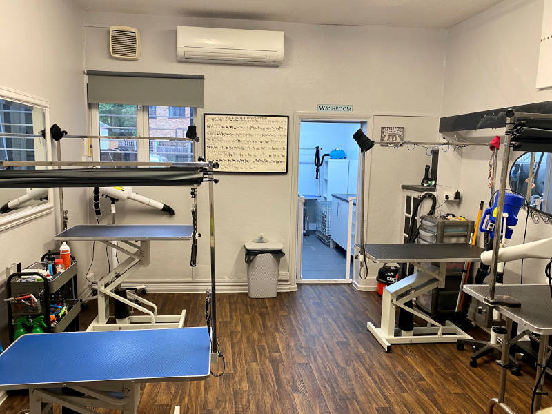 4Paws Pet Services Dog Grooming Room